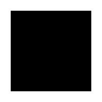RUSTY STICHES logo